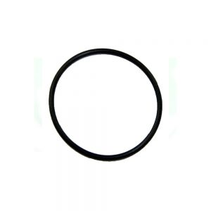 B5077 O-Ring
